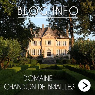 Blog Info Chandon de Briailles