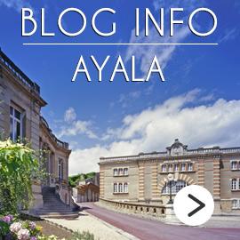 Ayala Blog Info