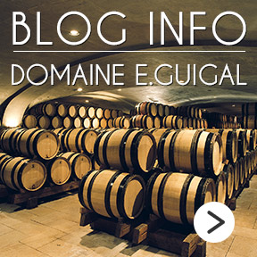 E.Guigal Blog Info