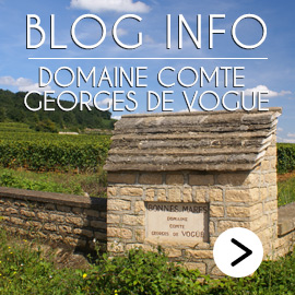 Comte Georges de Vogue Blog Info