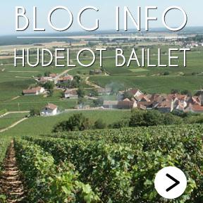 Hudelot Baillet Blog Info