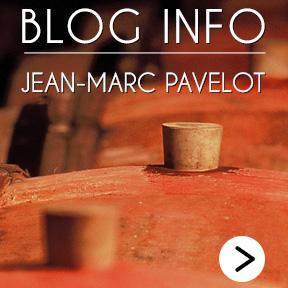 Domaine Jean-Marc Pavelot Blog Info