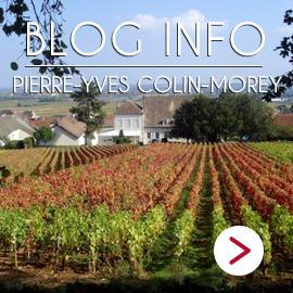 blog info Pierre Yves Colin Morey