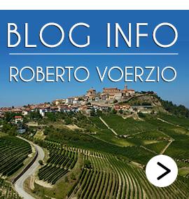 blog info Roberto Voerzio